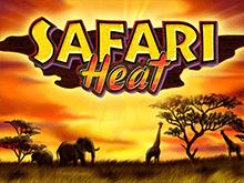 Играйте бесплатно в автоматы 777 Safari Heat